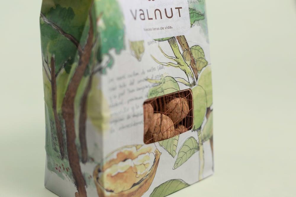 В Испании красиво упаковали грецкие орехи